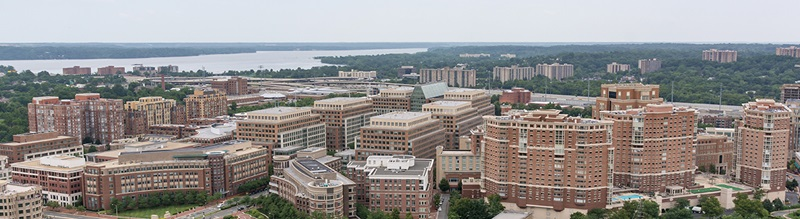 an overview of duke street in alexandria virginia